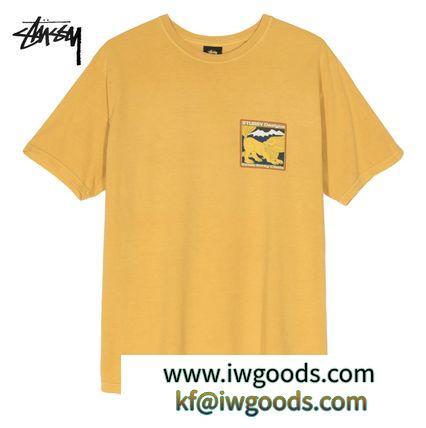★米国発/送関込*STUSSY ブランドコピー通販*新作*BREAKプリントTシャツ/MUSTARD★ iwgoods.com:nkrj4k-3