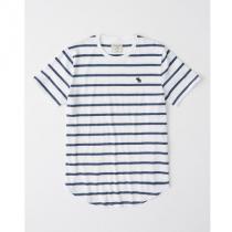 ★送料込 即発送★アバクロ アイコンボーダー  Tシャツ ホワイト iwgoods.com:3mffkz-1